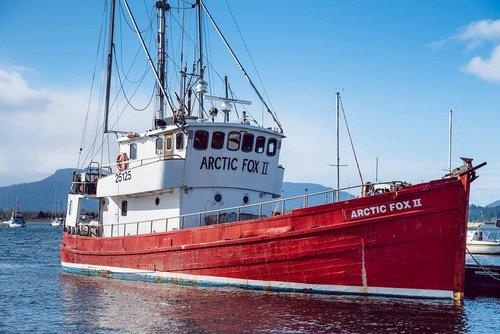 arctic fox  ship  vessel
