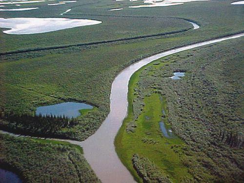 Arctic Tundra Near Tuk