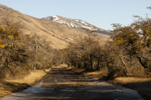 argentina patagonia calafate