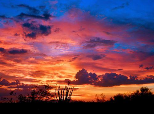 arizona tucson sunset