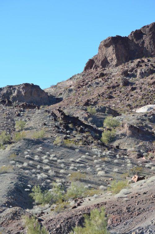 Arizona,vaizdingas,dykuma