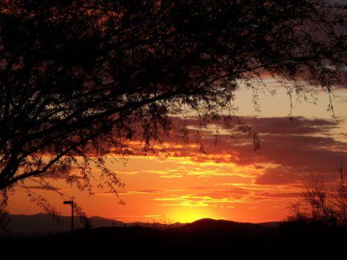 arizona sunset desert
