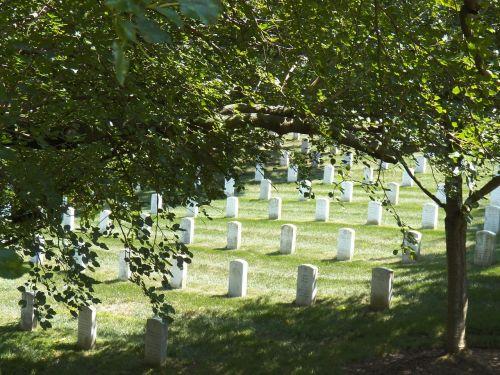 arlington national cemetery honor arlington va