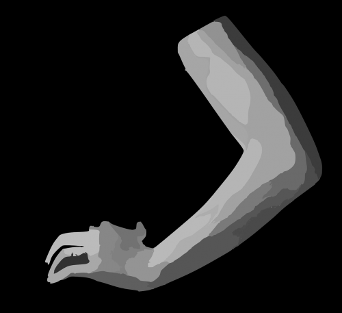 arm body part human