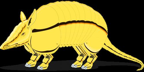 armadillo golden defense