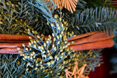 arrangement advent wreath cinnamon sticks