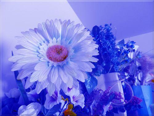 Floral Arrangements # 13