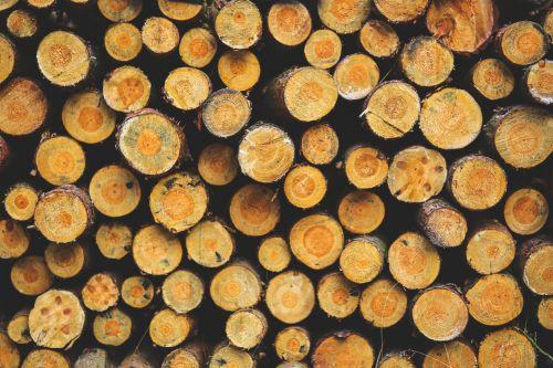 lagaminai, medžiai, senas, siena, mediena, dėvėti, ruda, grūdai, skydas, modelis, dizainas, Grunge, dėvėti, medžio dirbiniai, augalas, paviršius, lentos, lentjuosčiai, fono paveikslas medienos tekstūros