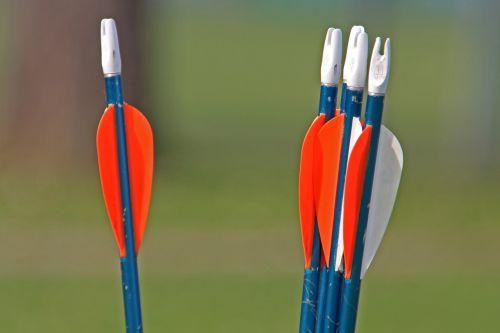 arrows archery bogensport