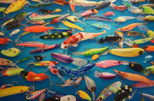 art color fish