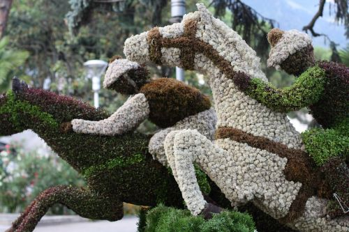 art nature sport