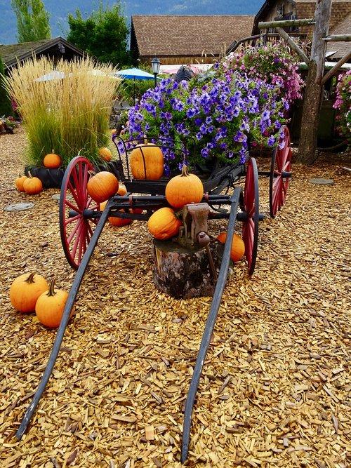 art  cart  flowers
