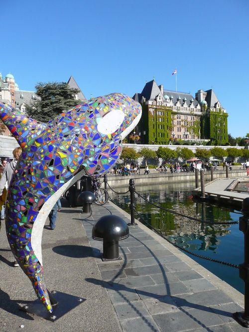art whale victoria