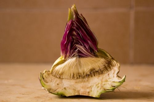 artichoke cut artichoke vegetable