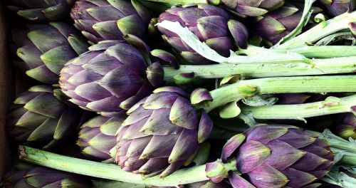 artichoke vegetables food