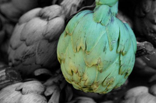 artichoke green public record
