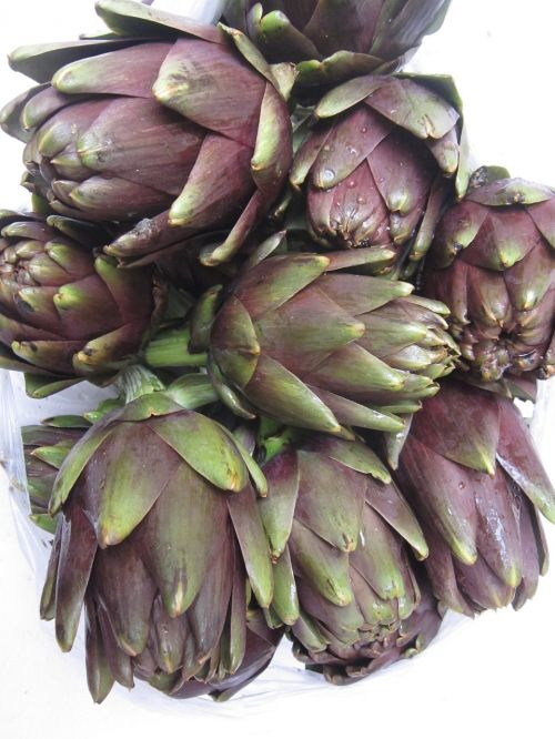 artichokes vegetables antioxidants