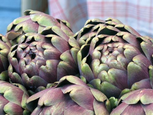 artichokes food vegetarian