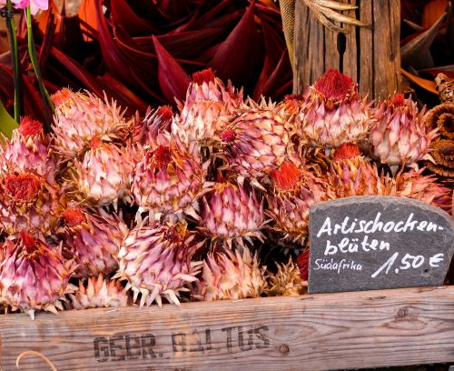 artichokes market vegetables