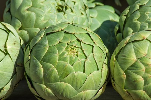artichokes  vegetable  market