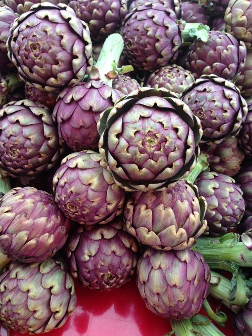 artichokes vegetables etal
