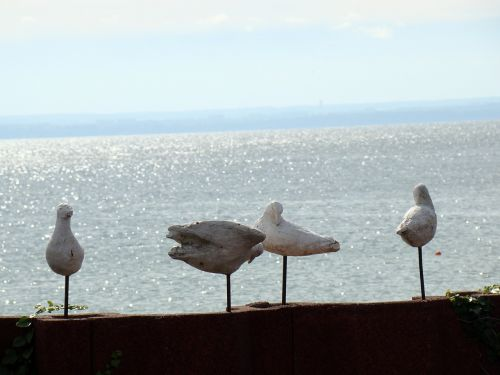 artificial birds the seagulls birds