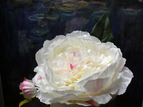 artificial flowers white blossom