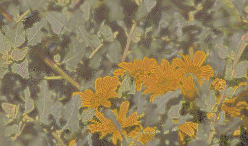 Artistic Wildflowers