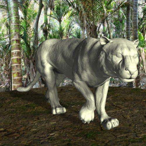 Asian Tiger 1