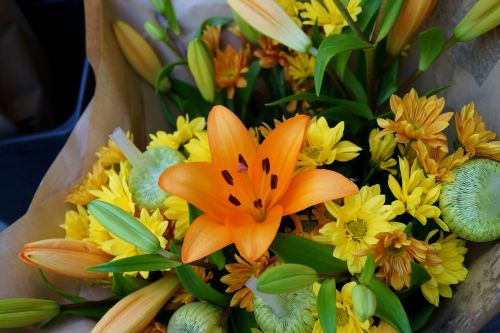 asiatic lily floral bouquet blossom