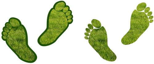 assistance barefoot carbon