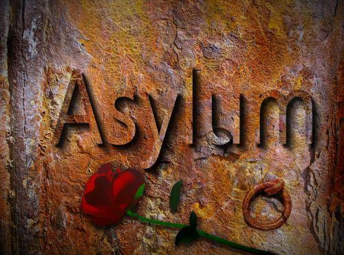 asylum refugees tracking