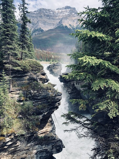 athabasca falls  scenic waterfalls  landscape