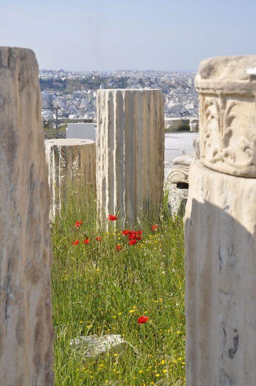 athens poppy columns