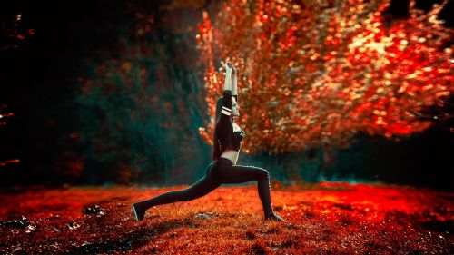 athletic girl yoga sports