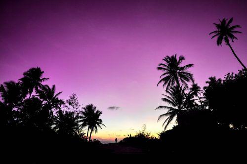 atolas,papludimys,pora,Kelionės tikslas,šventė,medaus mėnuo,sala,meilė,Maldyvai,gamta,žinios,nuotrauka,kurortas,romantika,romantiškas,saulėlydis,naršyti,kelionė,atostogos