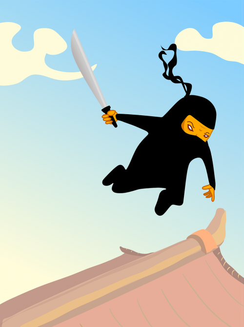 attack ninja warrior