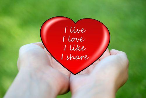 attitude to life live love