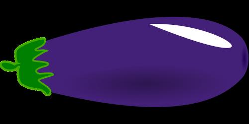 aubergine eggplant food