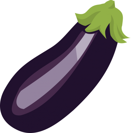 aubergine egg plant food