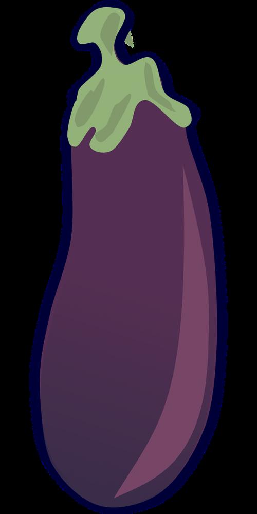aubergine eggplant solanum melongena