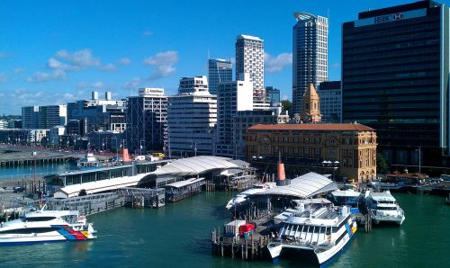 auckland harbor zealand