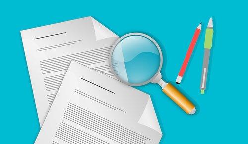 audit  tax  inspection