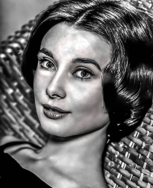 audrey hepburn-hollywood film actress