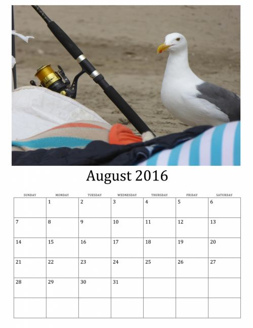 August 2016 Calendar Of Wild Birds