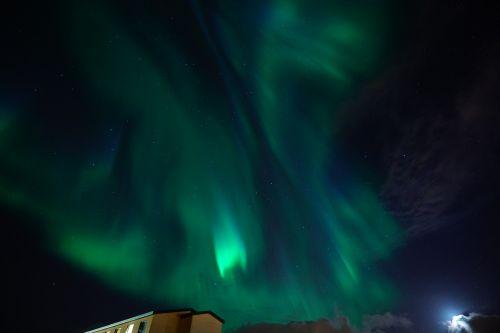 aurora northern lights green