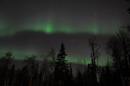 aurora borealis northern sky