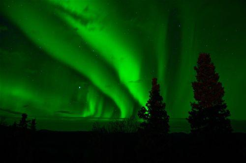 aurora borealis northern lights green