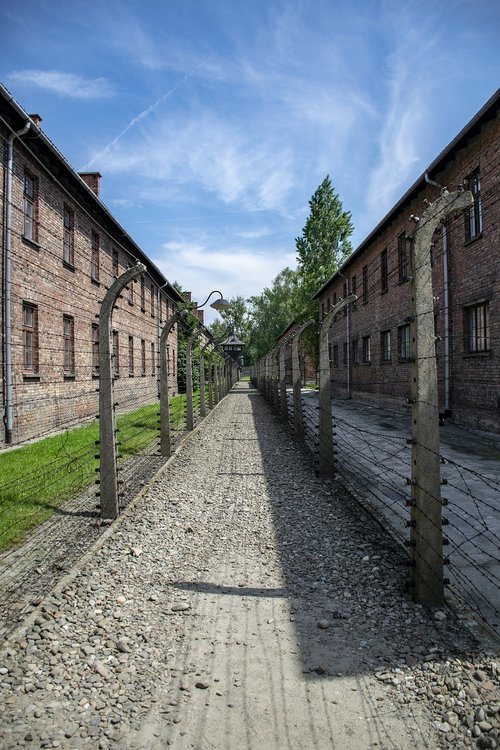 auschwitz  criminal camp  death camp