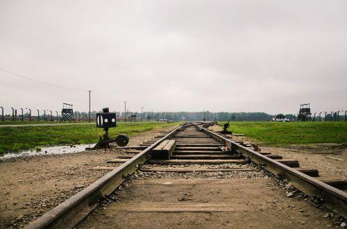 auschwitz birkenau rail